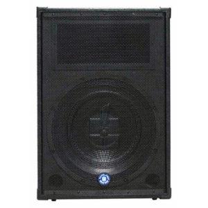 Topp Pro TPS 115A NEO активная акустическая система 15-дюймов